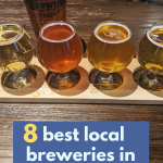 8 best local breweries in Colorado