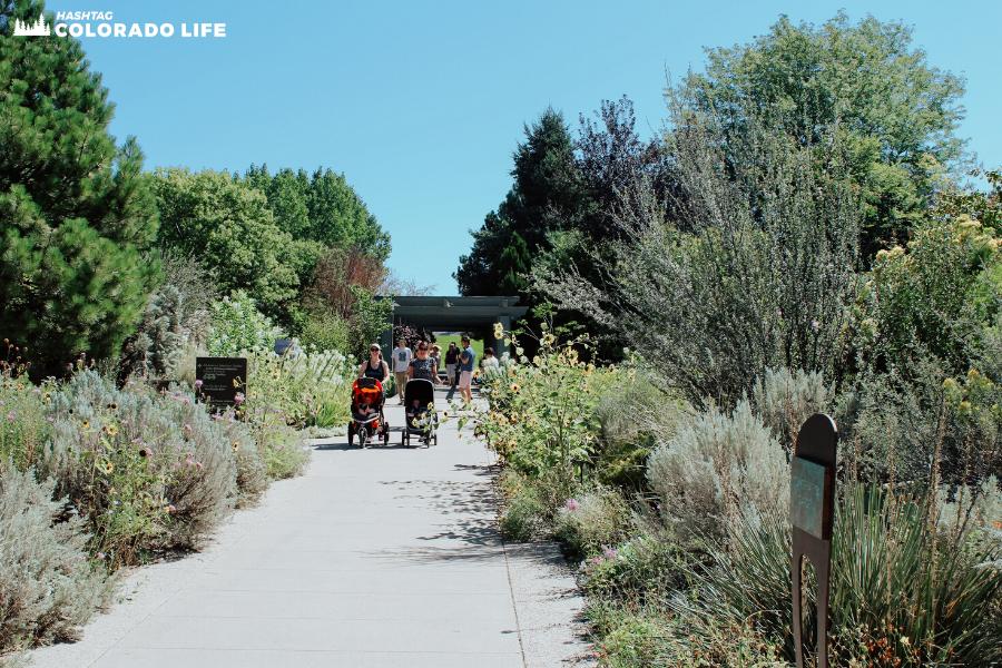denver botanic gardens walking paths