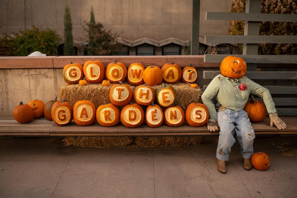 Fall in Colorado: 22 Colorado Fall Festivals and Autumn Events