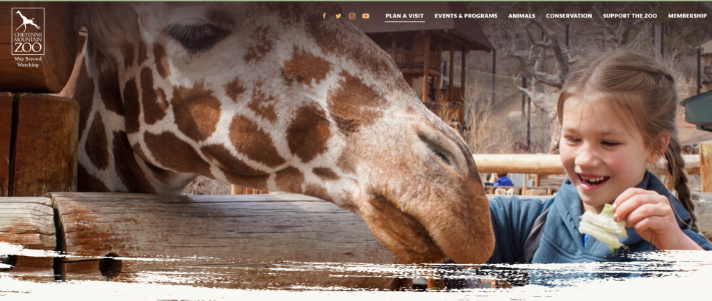 cheyenne mountain zoo website