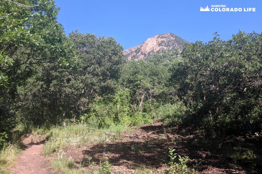 blodgett peak trailhead