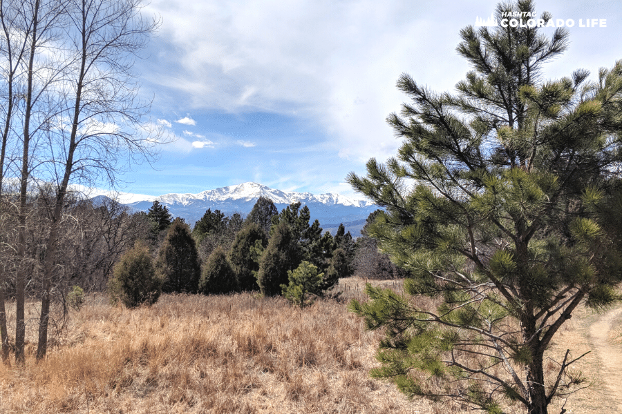 10 Best Hiking Trails & Day Hikes Near Colorado Springs