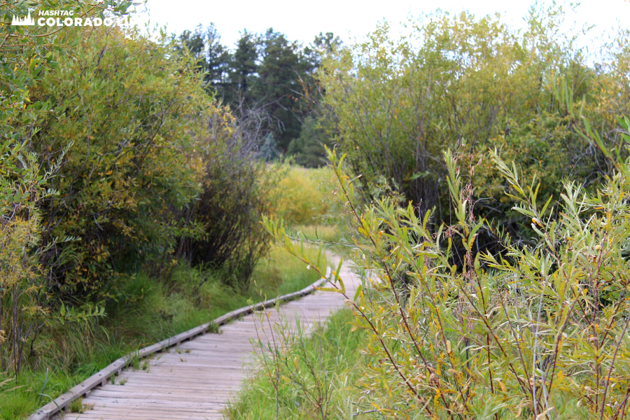 manitou lake park trail