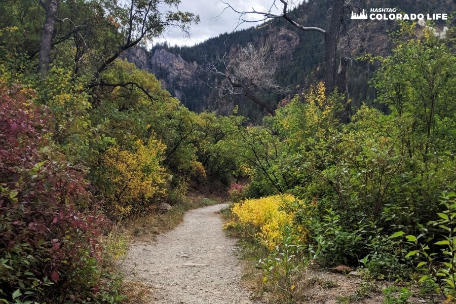 Hiking Grizzly Creek Trail in Glenwood Springs [2021 Guide]