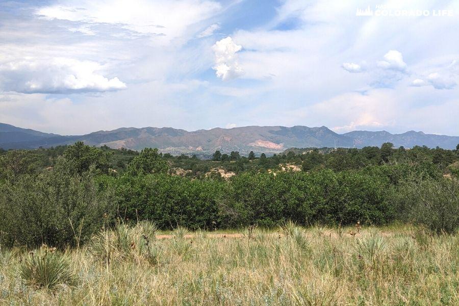 nature-trail-palmer-park